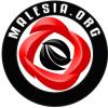 Portali Malesia.Org sot mbush 14 vjet