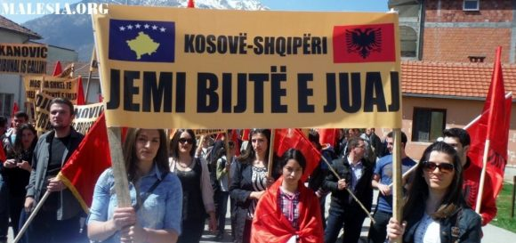 shqiptaret ne plave